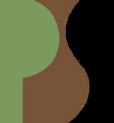 premier staffing logo